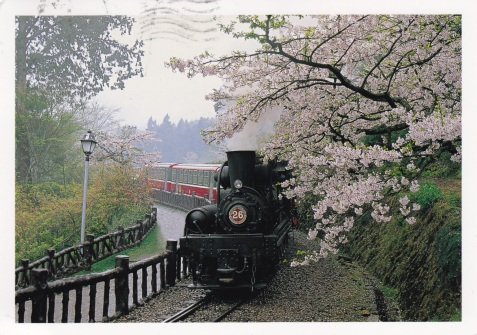 train_plum_blossoms